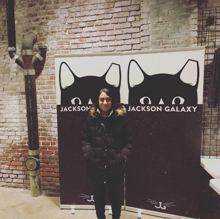 Total Cat Mojo Live!